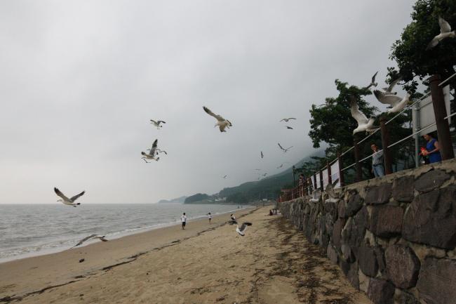 Ganghwado, Incheon (KTO)