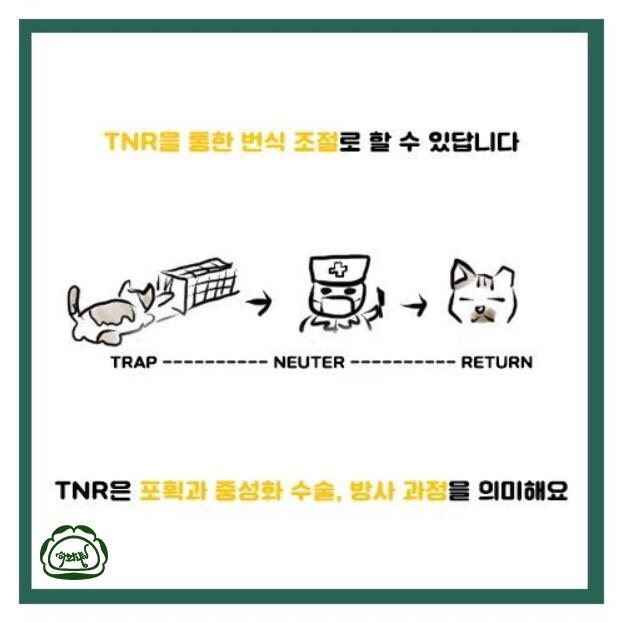 Ewha Cats made an online news card telling about TNR (Ewha Cats)
