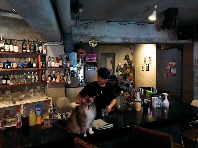 Bam meows at his regular spot on the bar counter, as Lee makes drinks behind him. Bam was discovered through an internet post looking for his next owner, and became Bar Bam Bar's first cat in 2013. (Bar Bam Bar)