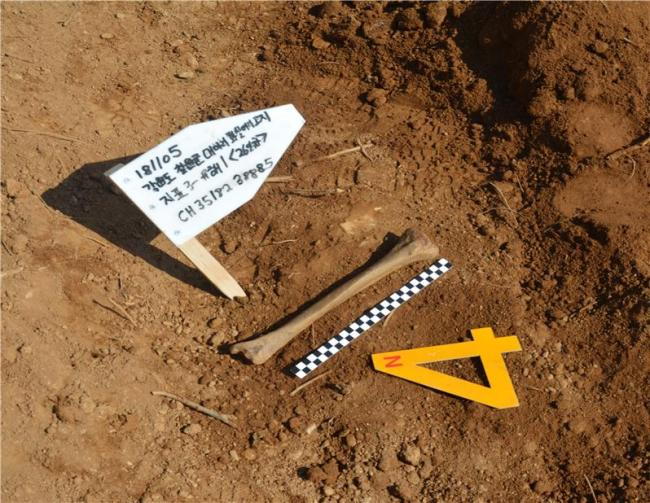 Remains discovered on Nov. 5. (Yonhap)