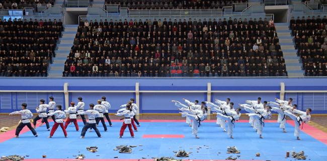 Joint taekwondo demonstration team of South and North Koreans perform at Pyongyang in this Nov.3 file photo. (Yonhap)