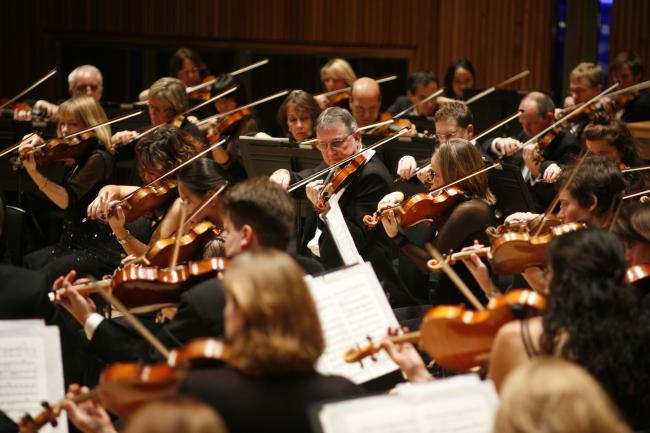 The London Philharmonic Orchestra (Vincero)