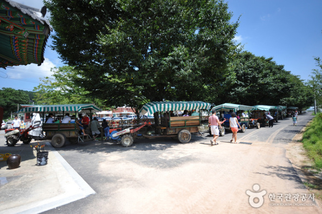 Visitors take part in hands-on programs on tractors at Imsil Cheese Village. / Korea Tourism Organization