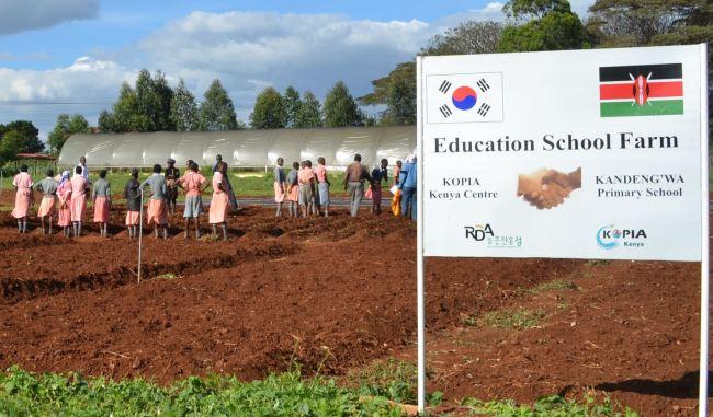 A school farm in Kiambu county, Kenya (KOPIA)
