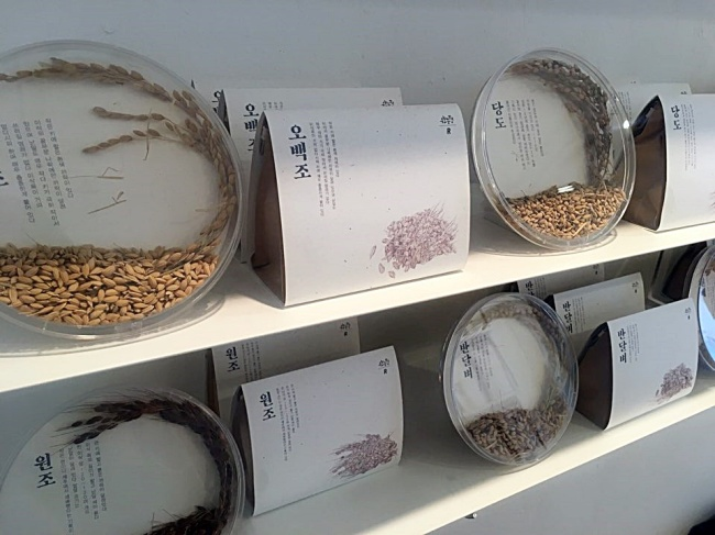 At Project Rent in Seongsu-dong, Seoul, 27 native rice varieties from Woobo Farm are currently on display. The exhibition continues until Monday. (Im Eun-byel / The Korea Herald)