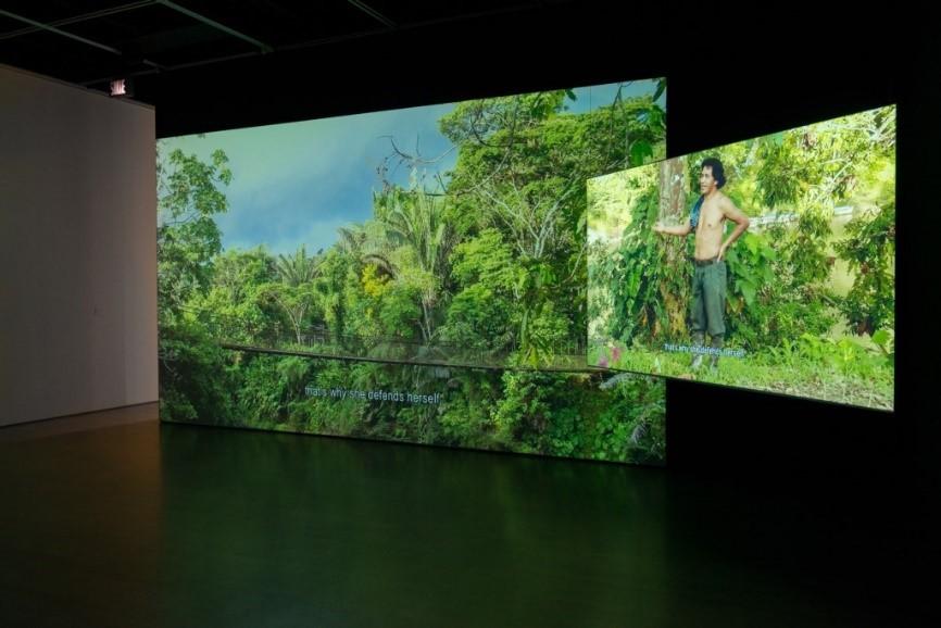 "Artist Ursula Biemann and architect Paulo Tavares' documentary ""Forest Law"" (Art Sonje Center)"