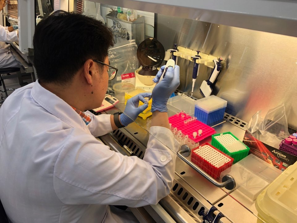A DNA analyst conducts a test to extract DNA from war remains for identification, at the Criminal Investigation Command at the Defense Ministry in Seoul on Wednesday. (Jo He-rim/The Korea Herald)