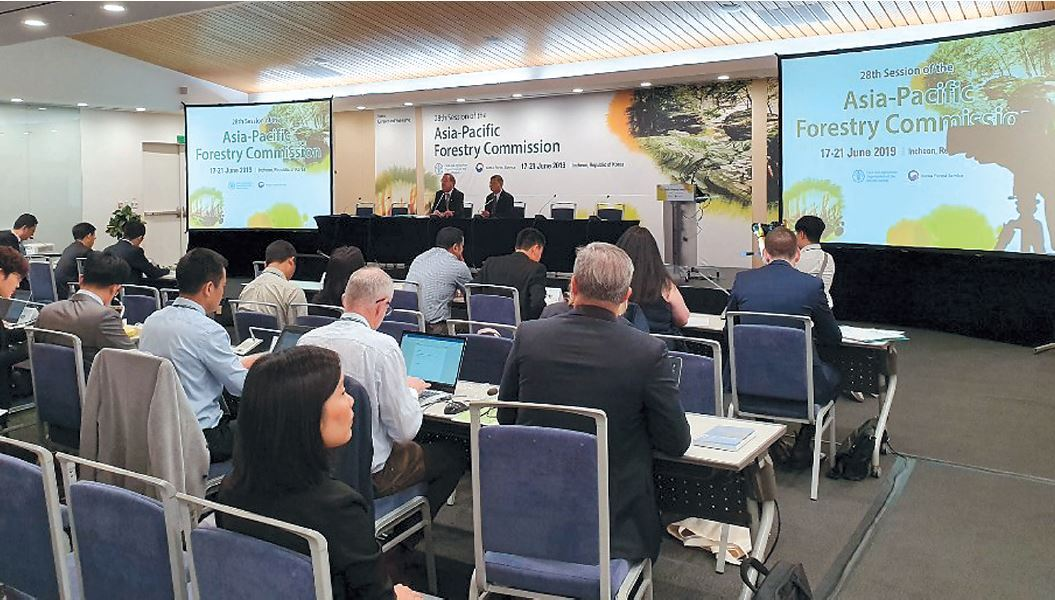 Participants attend Asia-Pacific Forestry Week 2019, which runs through Friday in Songdo, Incheon. (KFS)
