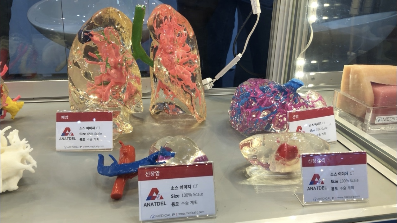 Medical IP's 3D printed models on display at Inside 3D Printing exhibition on June 27 at Kintex, Ilsan, Gyeonggi Province (Lim Jeong-yeo/The Korea Herald)