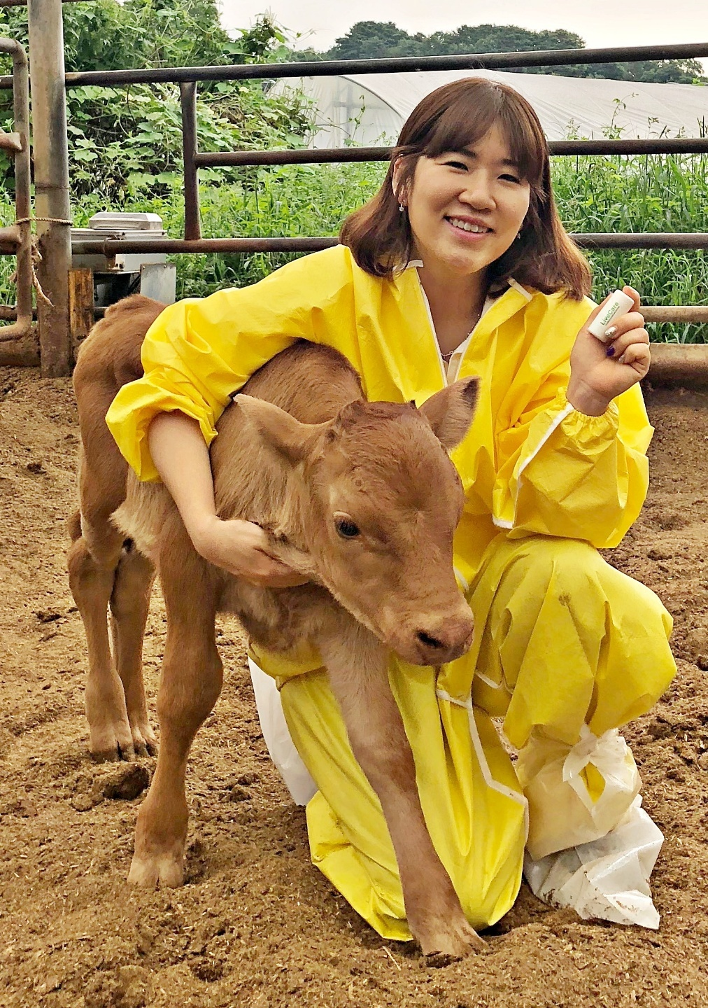 ULikeKorea CEO Kim Hee-jin with cattle. (uLikeKorea)
