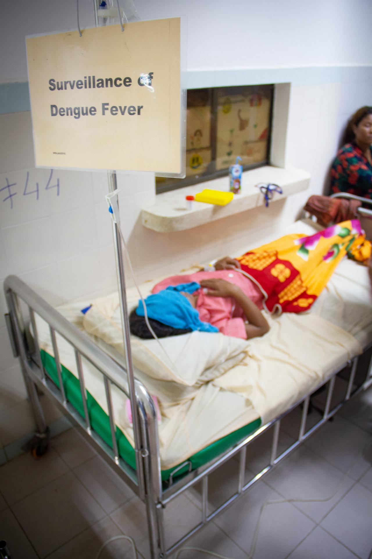 (AHC Dengue Image)