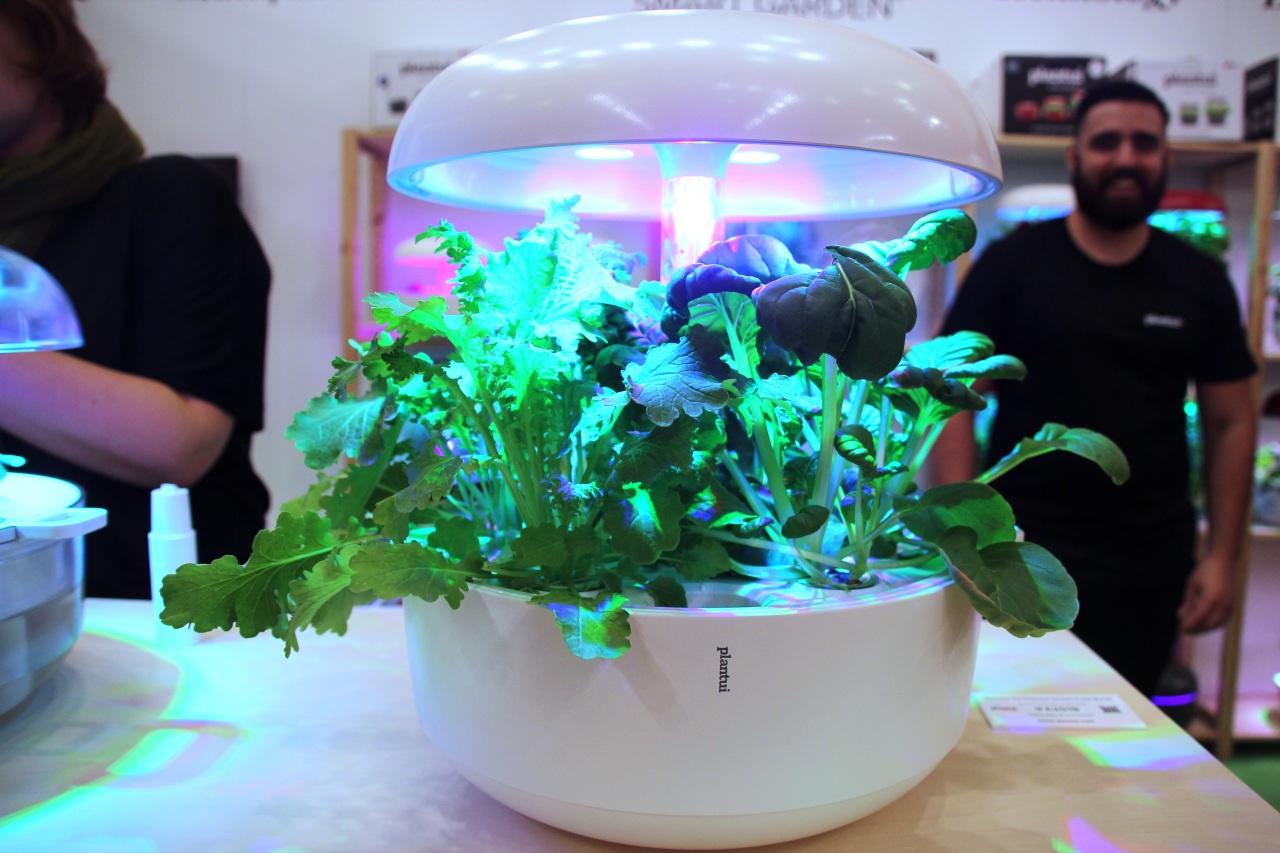 Plantui Smart Garden 6 (Lim Jeong-yeo/The Korea Herald)