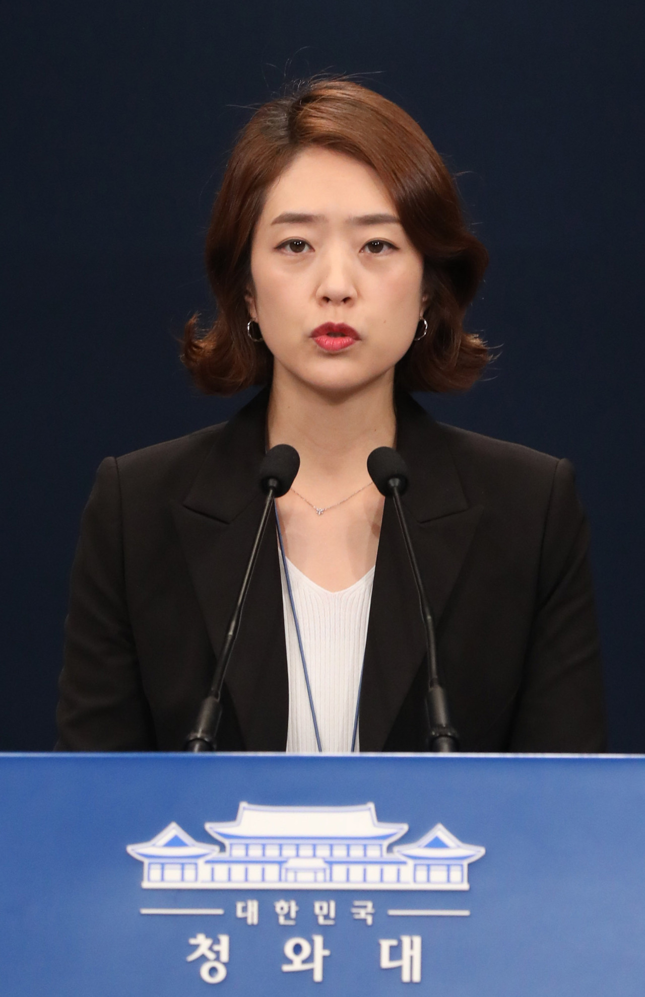 Cheong Wa Dae spokesperson Ko Min-jung at a press briefing on Wednesday (Yonhap)