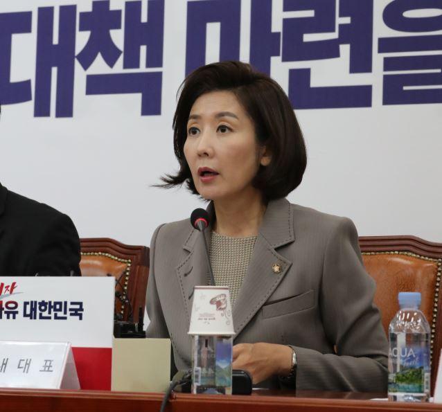 LKP floor leader Na Kyung-won (Yonhap)