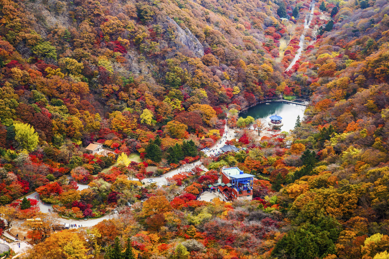 Fall in Naejangsan