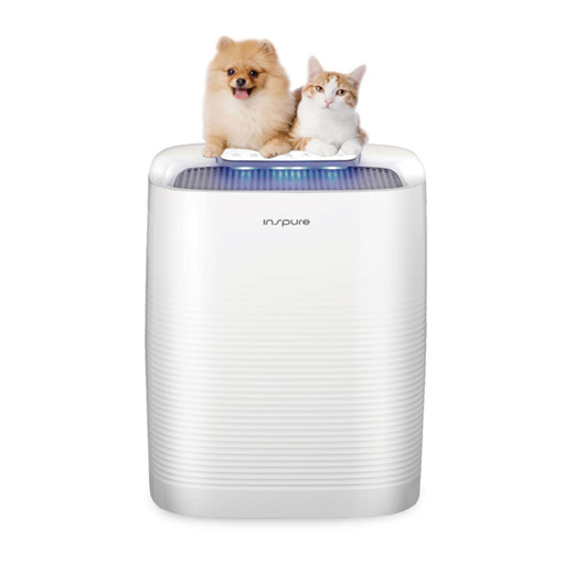Inspure air cleaner/purifier (Cuckoo)