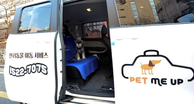 Pet Me Up taxis are equipped with basic pet items like pee pads and diapers, and an insurance plan covers its four-legged passengers. (Pet Me Up)