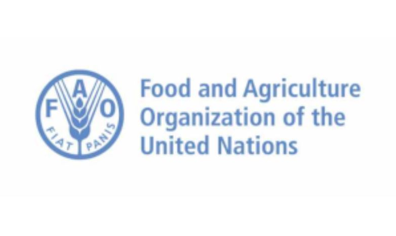 Food and Agricultural Organization of the United Nations (FAO)