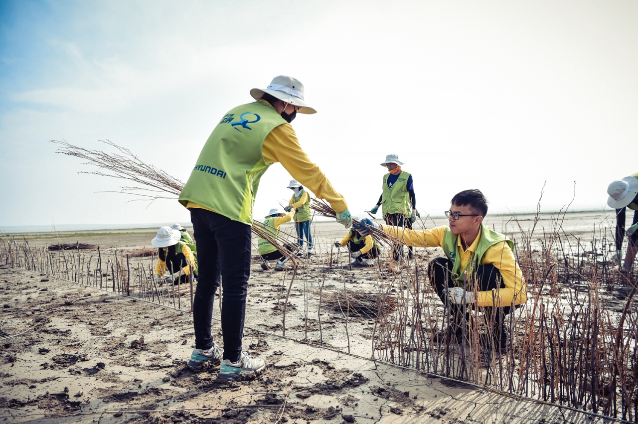 Hyundai Motor Group employees participate in a program designed to curb desertification in the region of Qagan Nor, Neimenggu, China, by making walls with tree branches to prevent grass seeds from flying off in the wind. (Hyundai Motor)