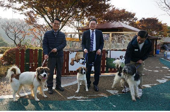 Professor Kim Min-kyu stands with a short-haired badugi Sapsaree puppy in the center, with the cloned Sapsaree father on the left and long-haired puppy on the right. (Chungnam National University Professor Kim Min-kyu)