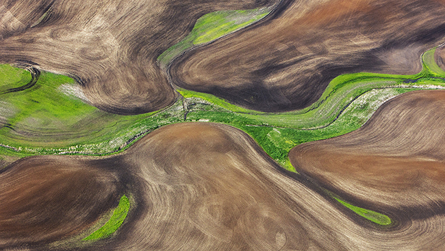 """Palouse"" was taken from a light aircraft flying above the wheat fields of the Palouse in the US state of Washington. It received the Gold Medal at competitions held in Argentina, Bulgaria and France.  (Courtesy of Ryu)"