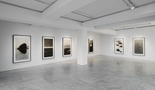 Lee Jung-jin's solo exhibition shows her 25 pieces of art. (PKM Gallery and the artist)