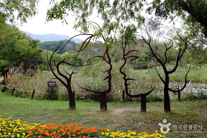 Trees are seen an ecological park on the Yeongsan River in Gwangju, where the male-to-female ratio stood at 97.9 per 100 in January 2020, or 720,931 vs. 735,757. It was the fourth-lowest figure in the nation, with only Seoul, Busan and Daegu posting lower ratios. (Korea Tourism Organization)
