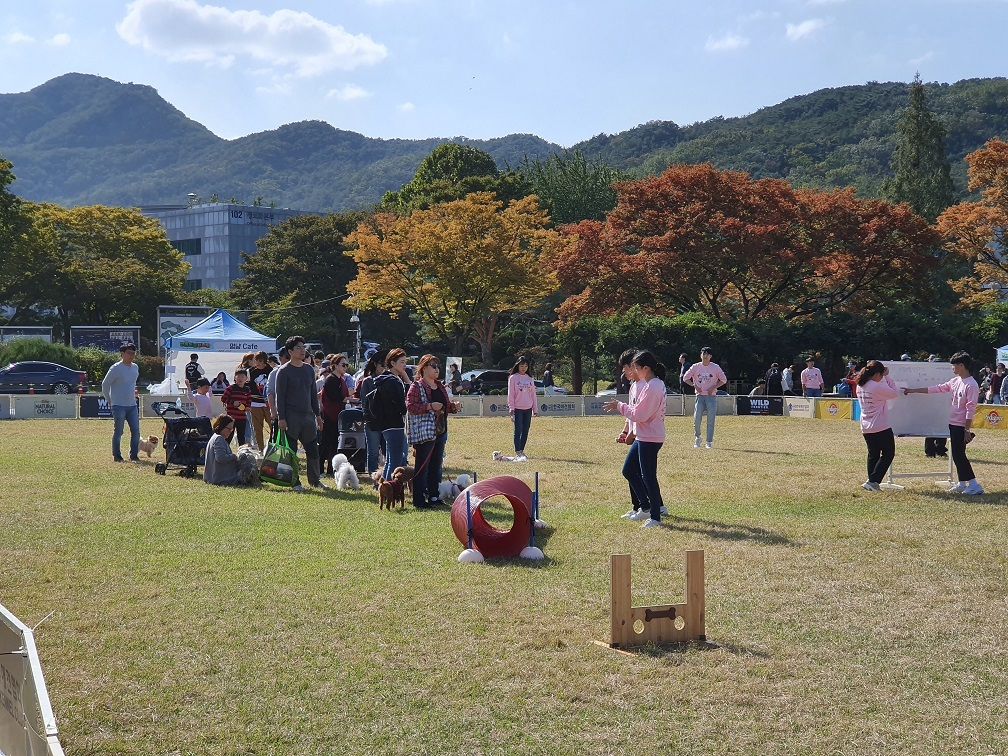 A companion animal festival is held at Seoul National University in October. (Gwanak-gu Office)