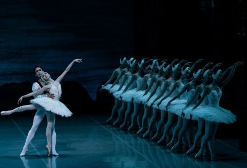 "Korean National Ballet's performance of ""Swan Lake"" (Korean National Ballet)"