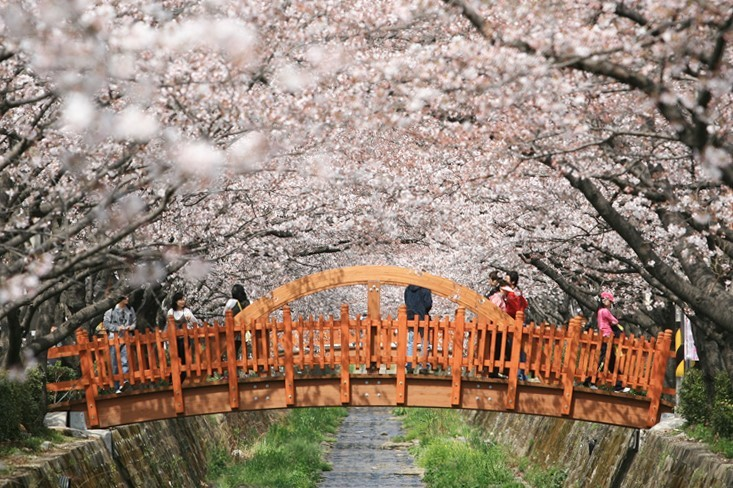 (Changwon City)
