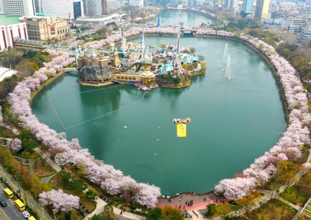 Seokchon Lake with cherry blossom trees in spring (Seoul Tourism Organization)