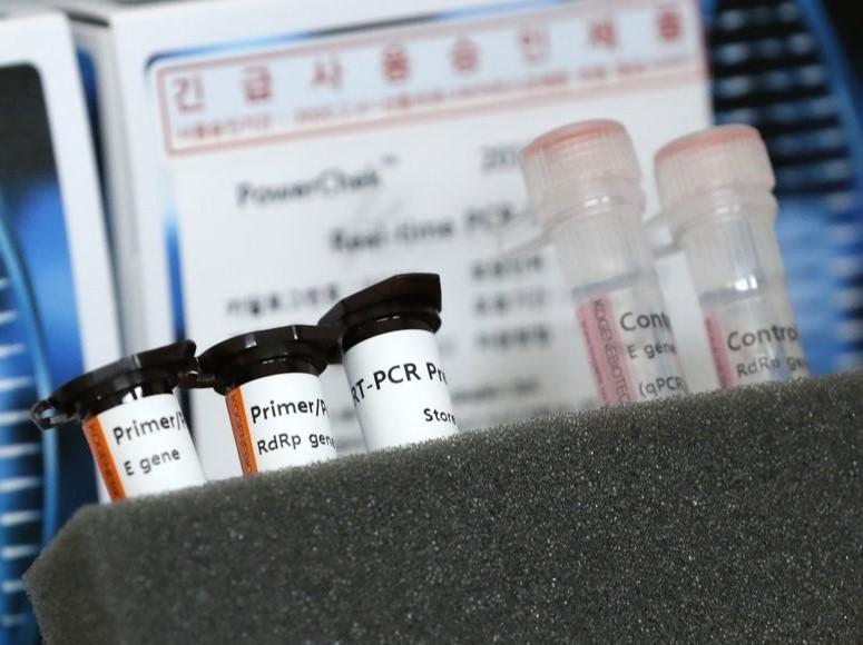 S Korea coronavirus cases rise steadily