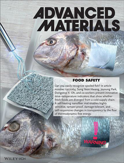The cover of magazine Advanced Materials' March edition. (KRICT)