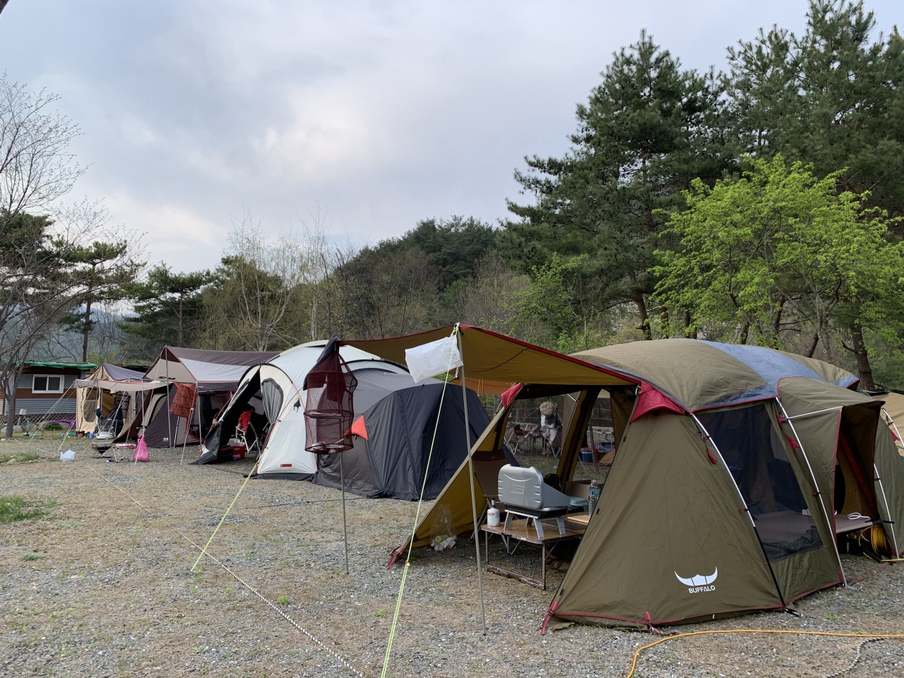 Tents are set up shoulder to shoulder at a camping site in Hongcheon, Gangwon Province, April 30. (The Korea Herald)