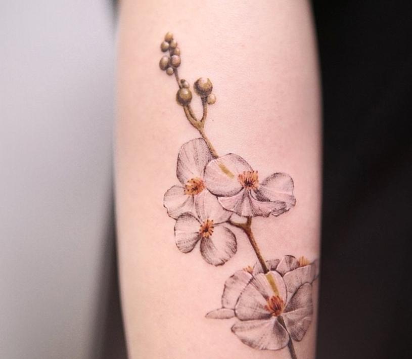 Flower tattoo (Courtesy of tattooist, Lee Yoon-seo)
