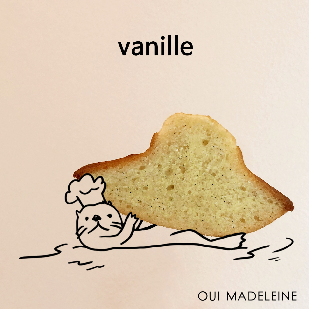 Oui Madeleine's vanilla madeleine is incredibly bouffant, giving away with a slight bounce under the pressure of one's teeth (oui__madeleine)