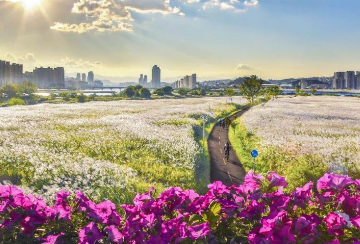 This photo shows a view of the Taehwagang National Garden around Taehwa River in Ulsan, which is one of the eight major cities in Korea. Ulsan saw its population decline for the 34th consecutive month in August. (Ulsan City)
