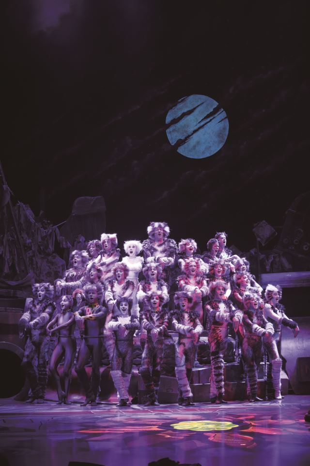 "The Jellicle cats in ""Cats"" (S&Co)"