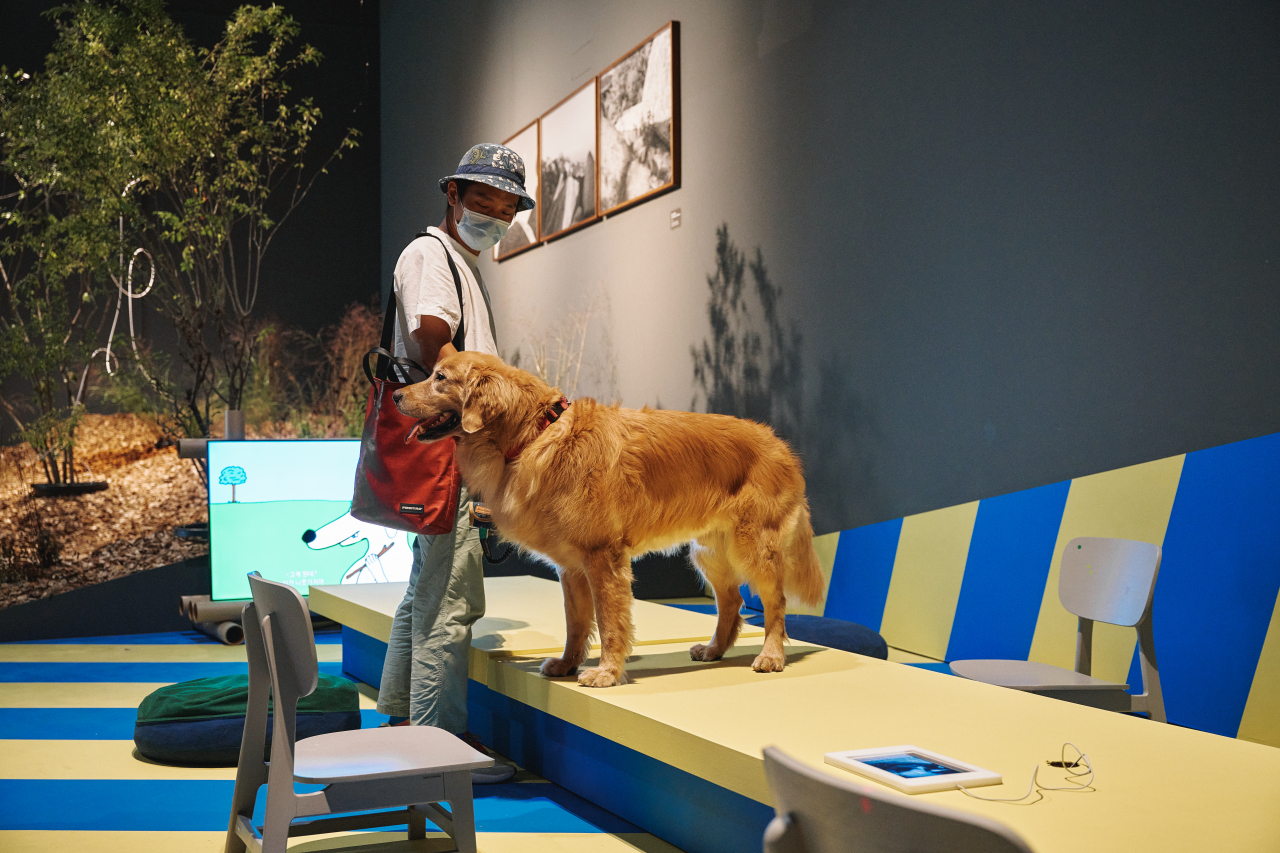 "Installation view of ""A Museum for All, a Museum for Dogs"" at MMCA Seoul in Jongno-gu, central Seoul (MMCA)"