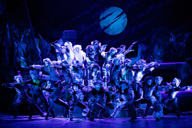 "Scene from musical ""Cats"" (S&Co)"