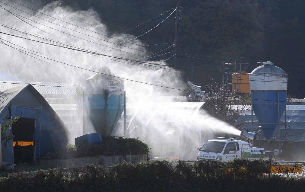 Disinfection measurements in poultry farms located in Yongin, Gyeonggi Province on Thursday.(Yonhap)