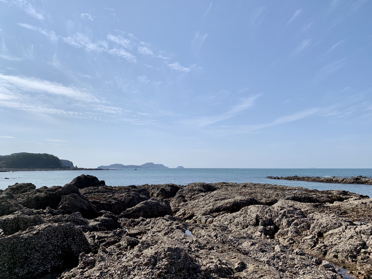 Wild oysters on the rocks at Padori Beach in Taean, South Chungcheong Province (Im Eun-byel / The Korea Herald)
