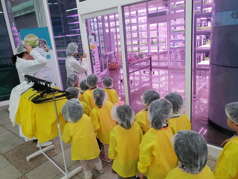 Children line up in front of a Metro Farm to experience and learn about agriculture in January 2020.(Farm8)