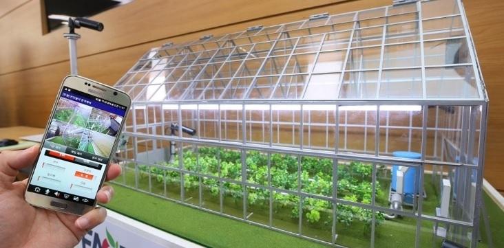 Smart farm (Yonhap)