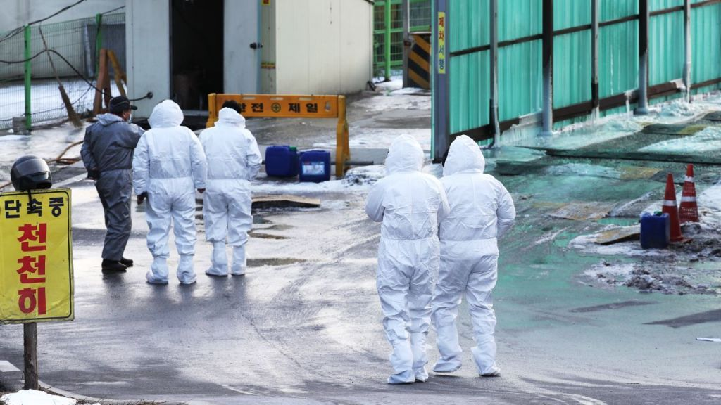 In this file photo, officials enter a chicken farm in the central city of Sejong on Jan. 6, 2021. (Yonhap)