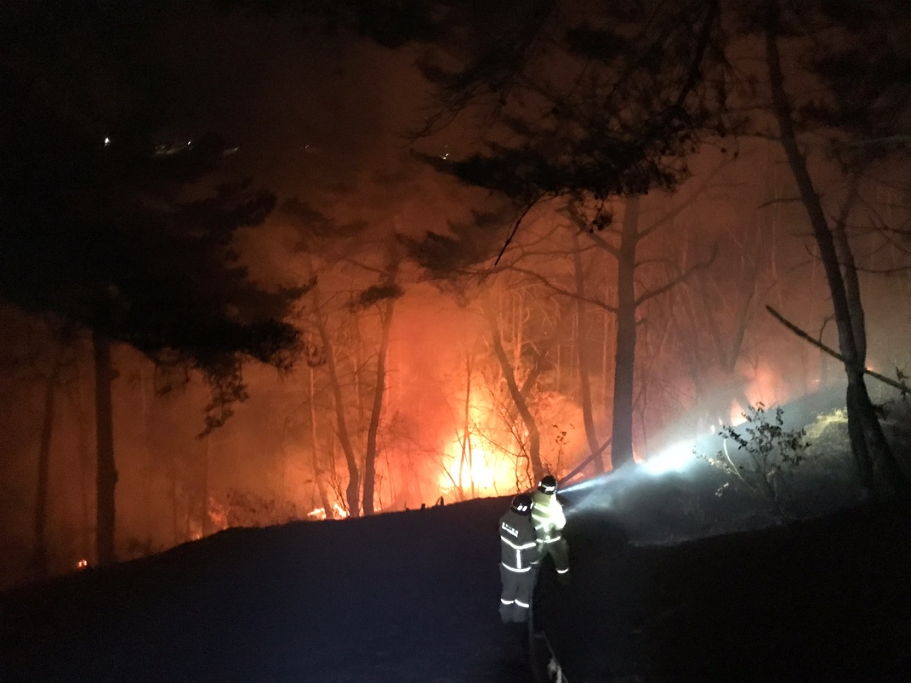 Firefighters work to contain a wildfire in Andong, North Gyeongsang Province, on Sunday, in this photo provided by the National Fire Agency. (National Fire Agency)