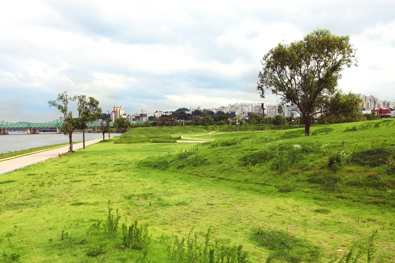 Yeouido Hangang Park (KTO)