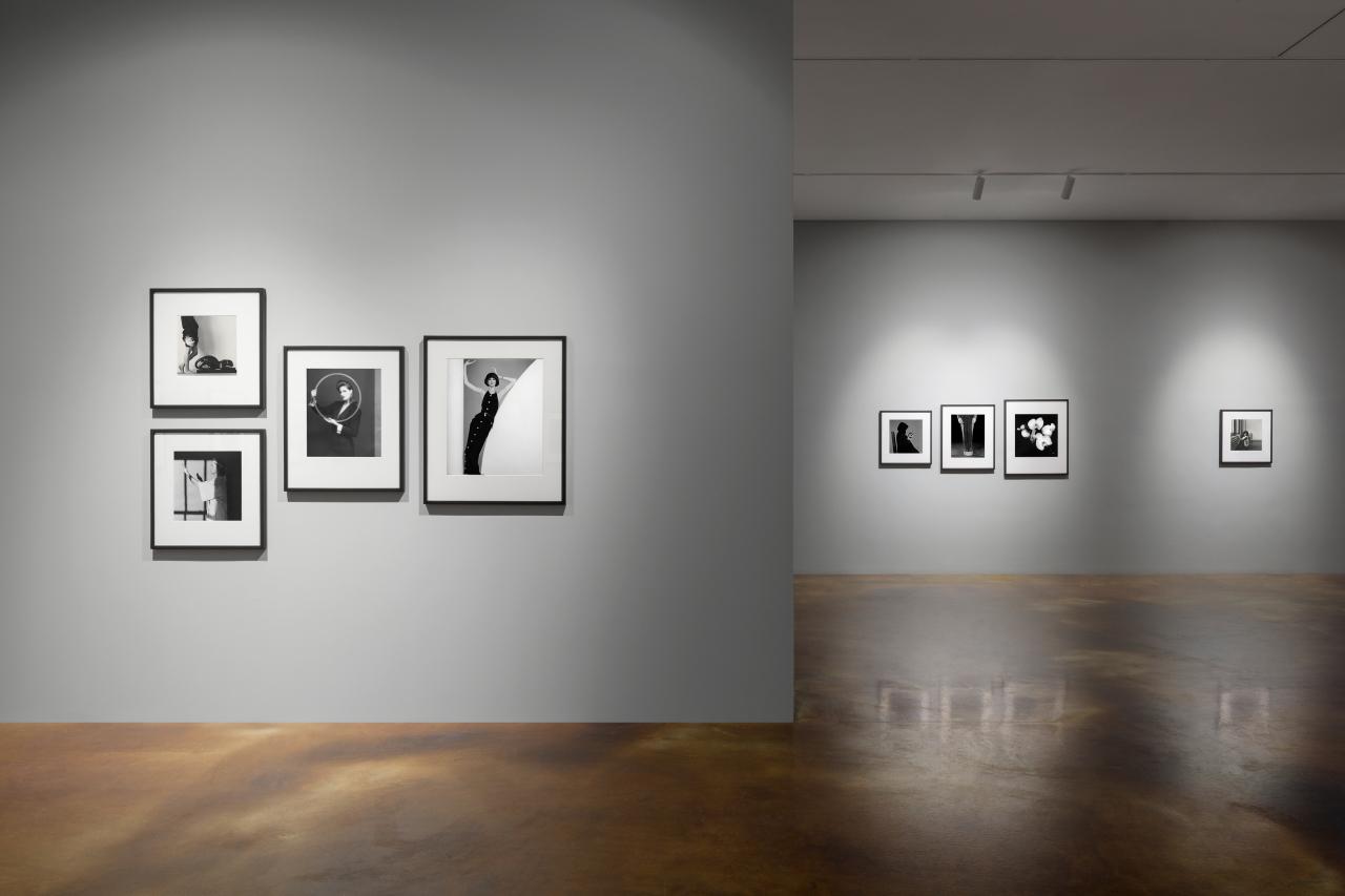 "Installation view of ""Robert Mapplethorpe: More Life"" (Kukje Gallery)"