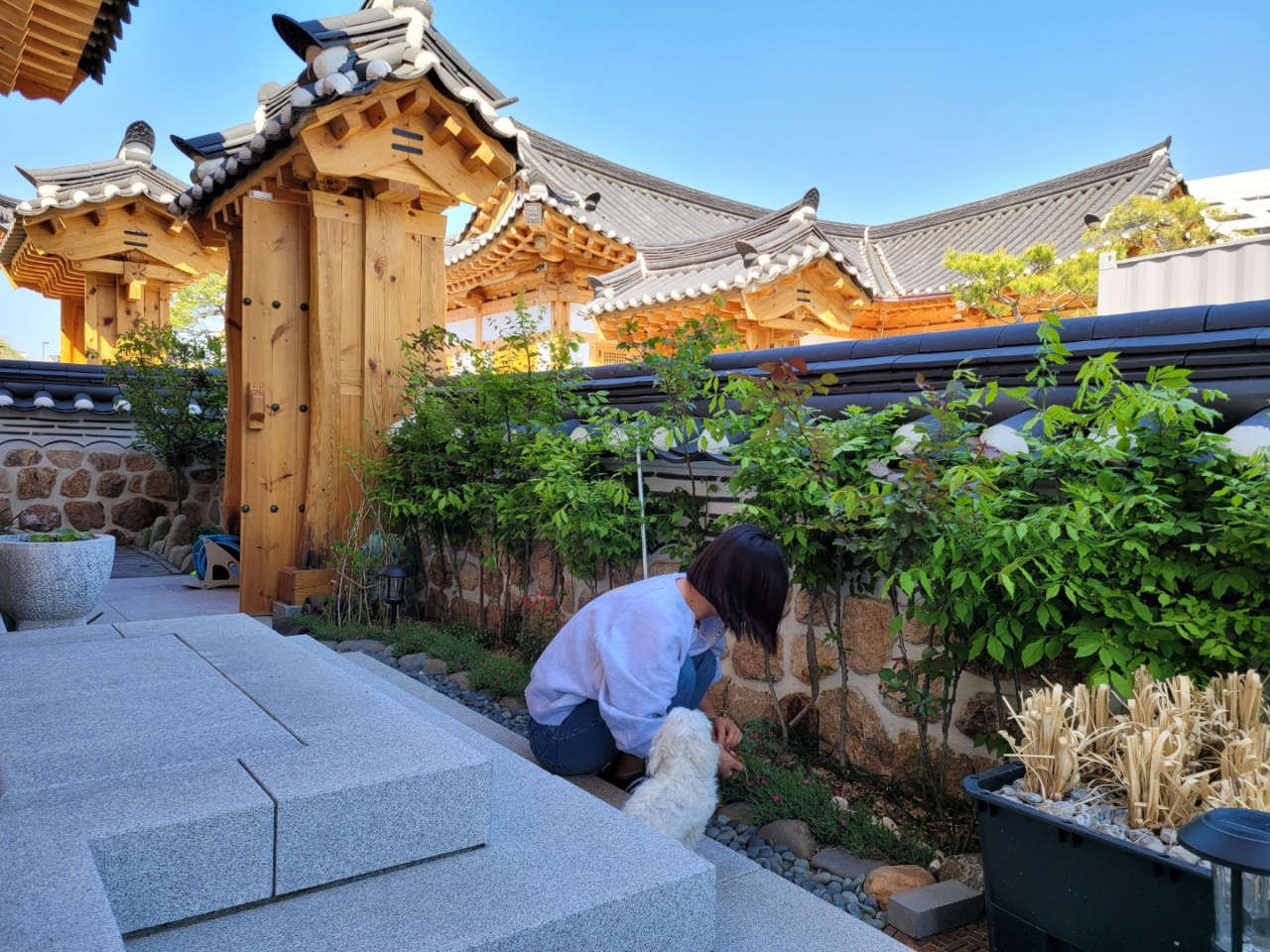 A resident of the hanok town in Sejong City trims plants at her house. (Park Yuna/The Korea Herald)