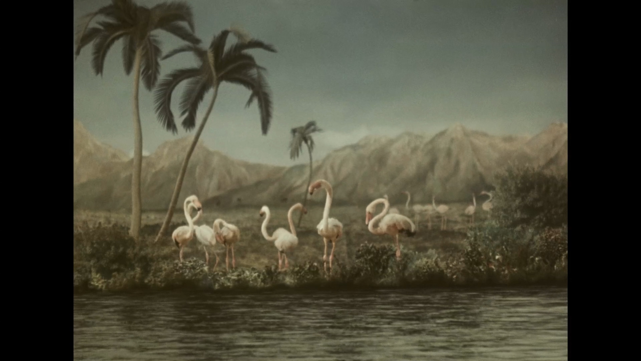 """Journey to the Beginning of Time"" by Karel Zeman (Karel Zeman Museum Collection)"